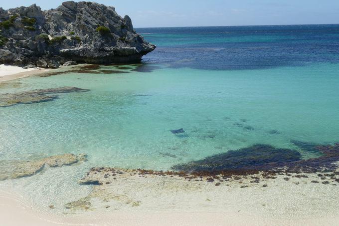 Beach on Rottnestisland with Stingray